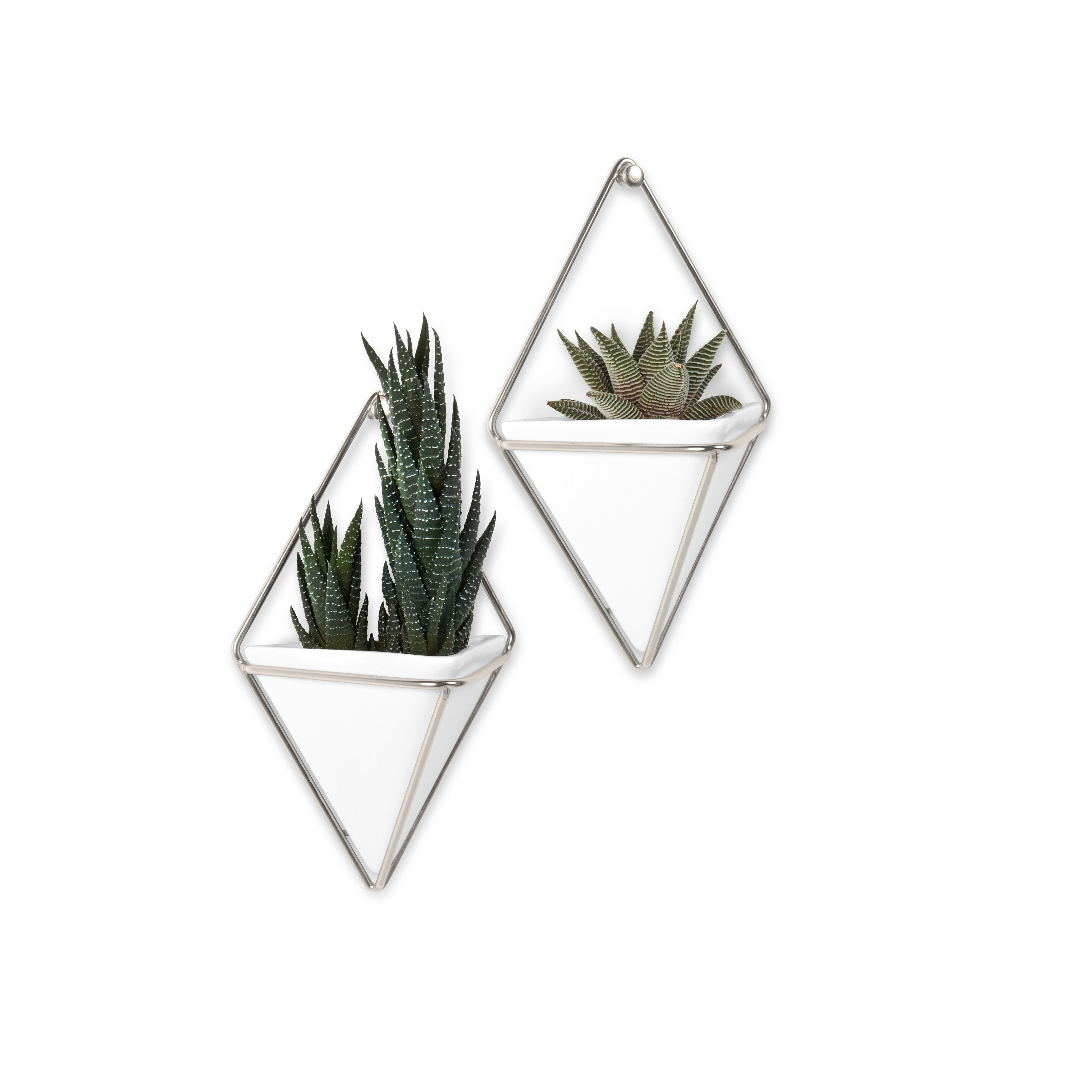 Shop Umbra Trigg Hanging Planter & Wall Decor (Set Of 2) – Free Regarding Most Current Trigg Ceramic Planter Wall Decor (Gallery 13 of 20)
