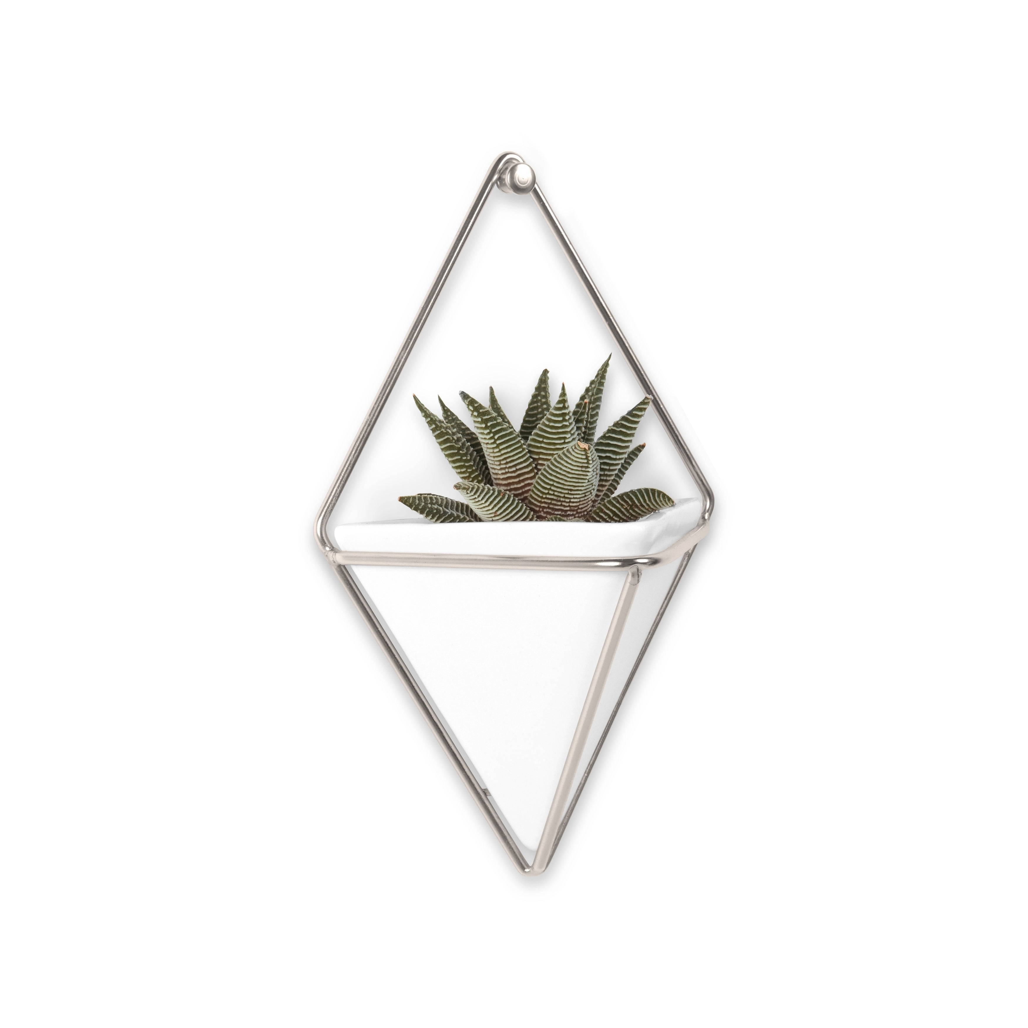 Shop Umbra Trigg Hanging Planter & Wall Decor (Set Of 2) – Free Throughout Latest 2 Piece Trigg Wall Decor Sets (Set Of 2) (View 12 of 20)