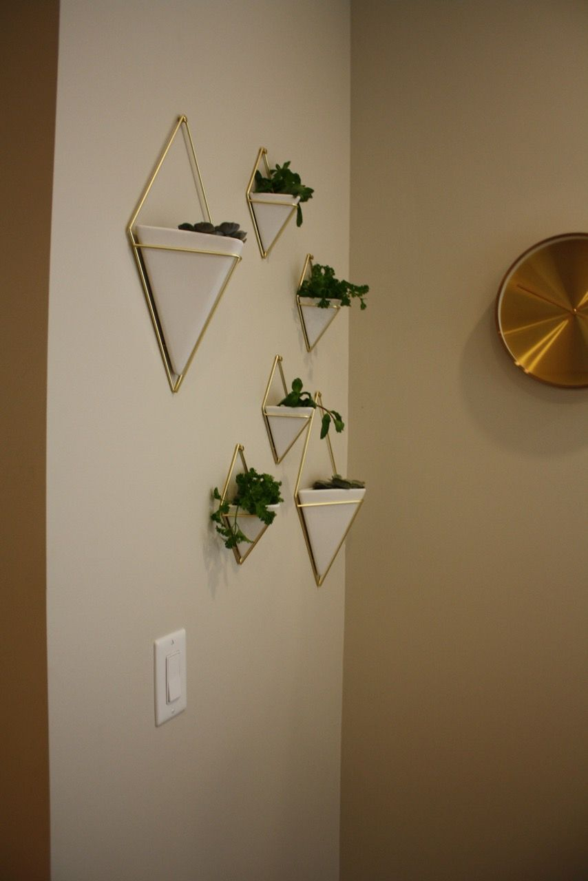 Trigg Ceramic Planter Wall Decor Throughout Well Liked Umbra. Trigg Wall Vessels (View 12 of 20)