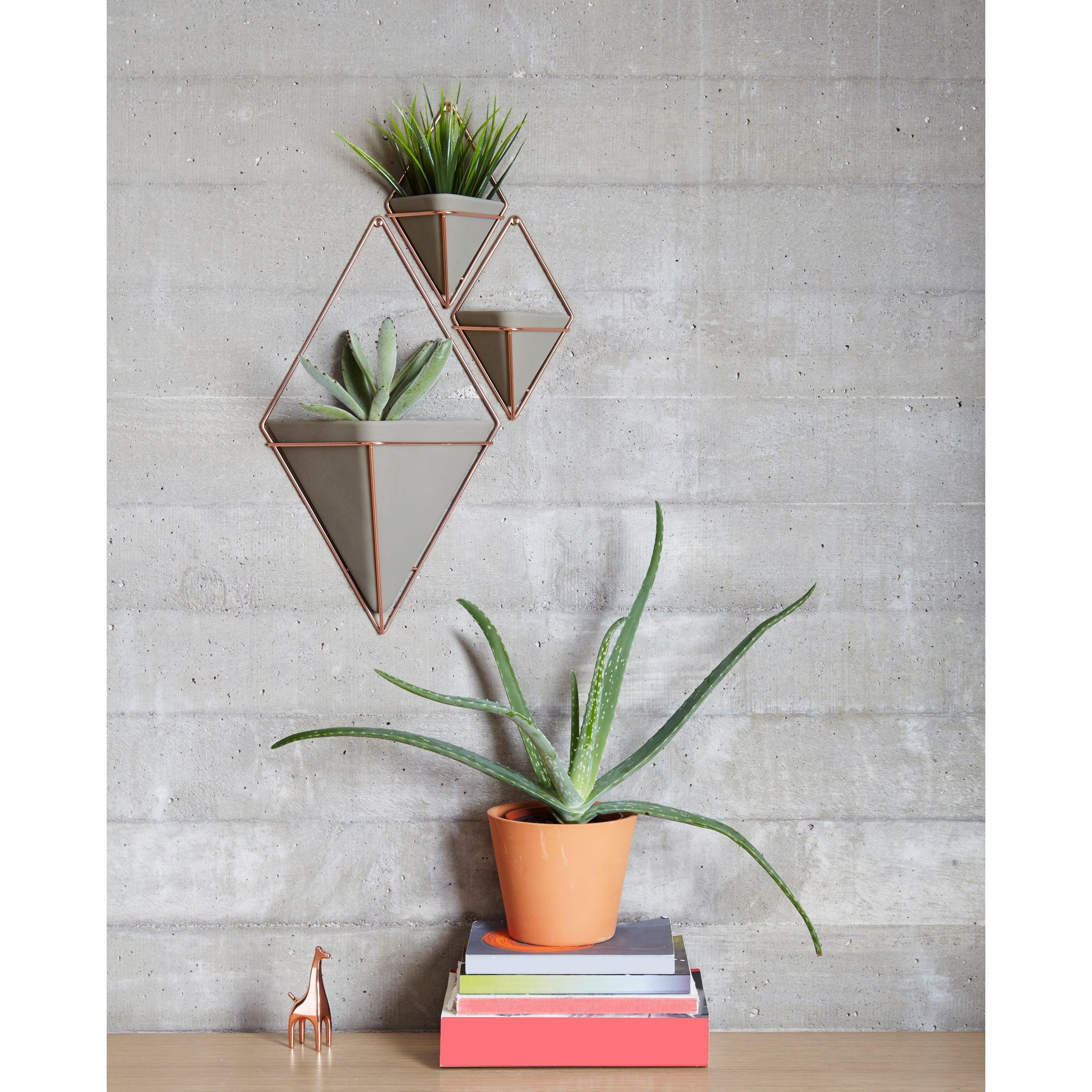 Trigg Ceramic Planter Wall Decor With Regard To Most Popular Shop Umbra Trigg Hanging Planter & Wall Decor (set Of 2) – Free (View 5 of 20)