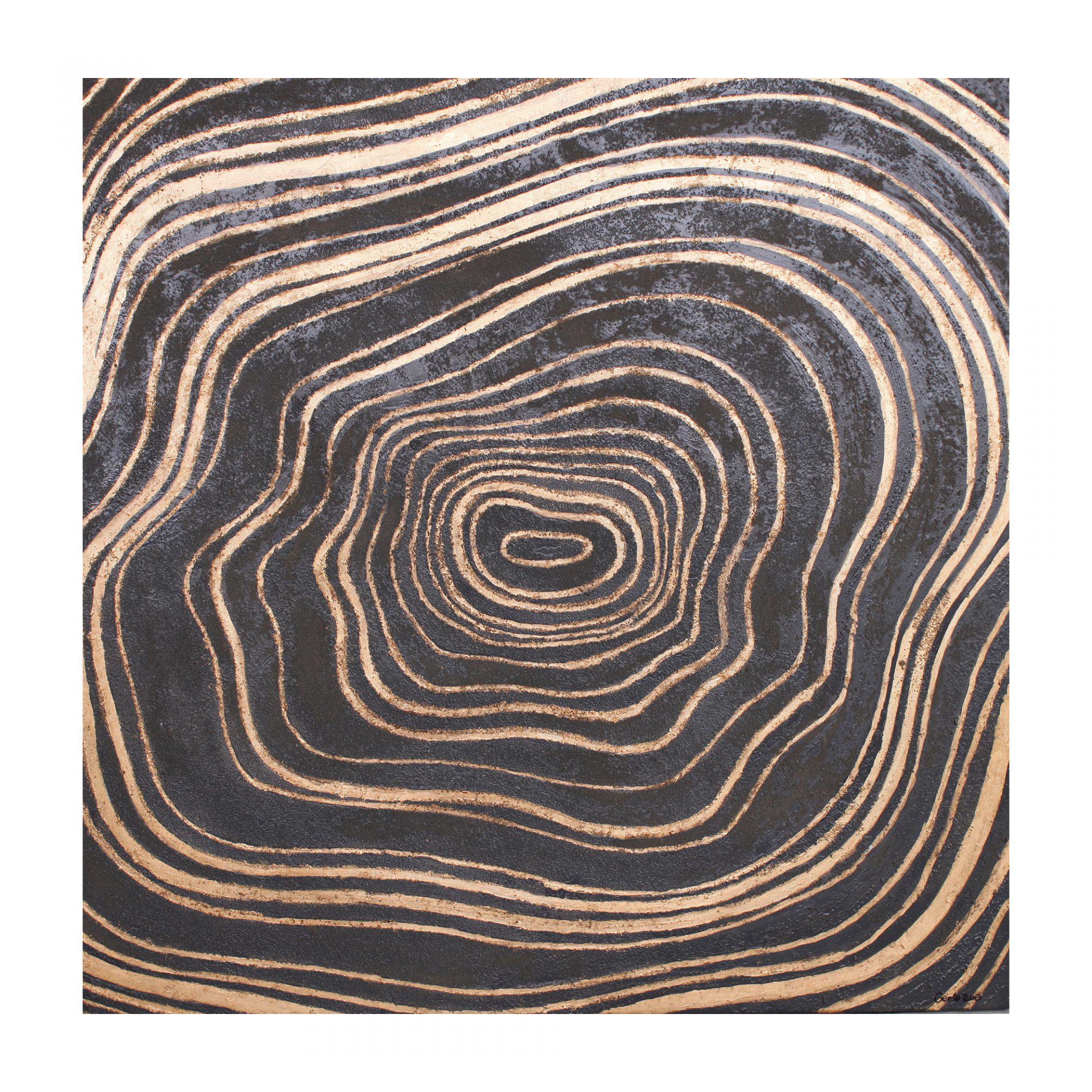 Widely Used Tree Rings Wall Decor – Peter Corvallis Productions Within Rings Wall Decor (Gallery 12 of 20)