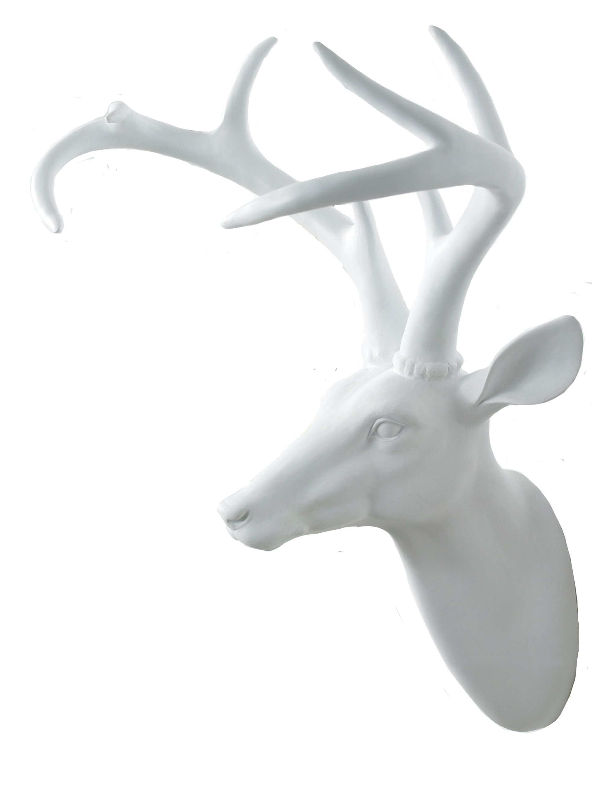 2019 Highlands Ranch The Templeton Wall Decor With Regard To Arthouse Stag's Head Wall Décor & Reviews (View 1 of 20)