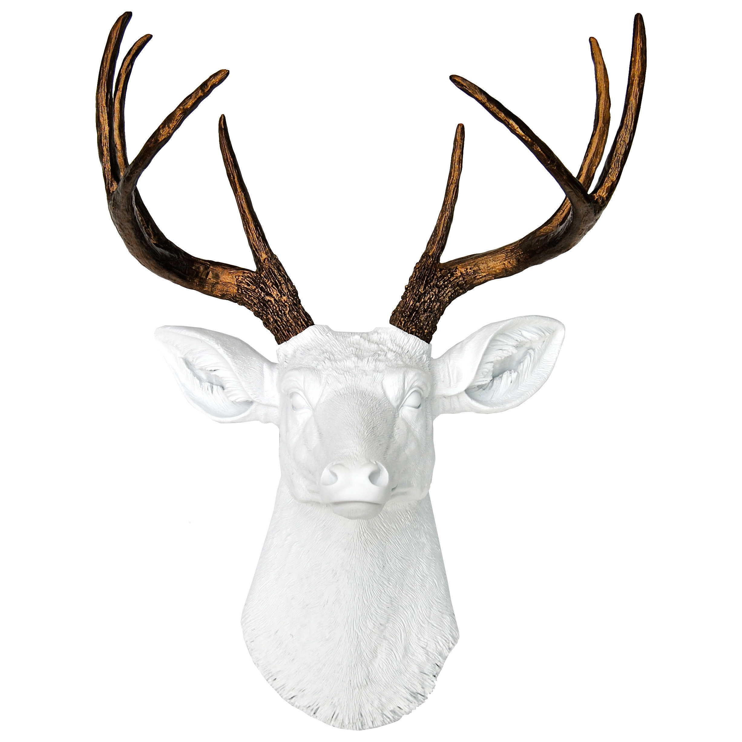 Allmodern Throughout 2020 Large Deer Head Faux Taxidermy Wall Decor (View 3 of 20)