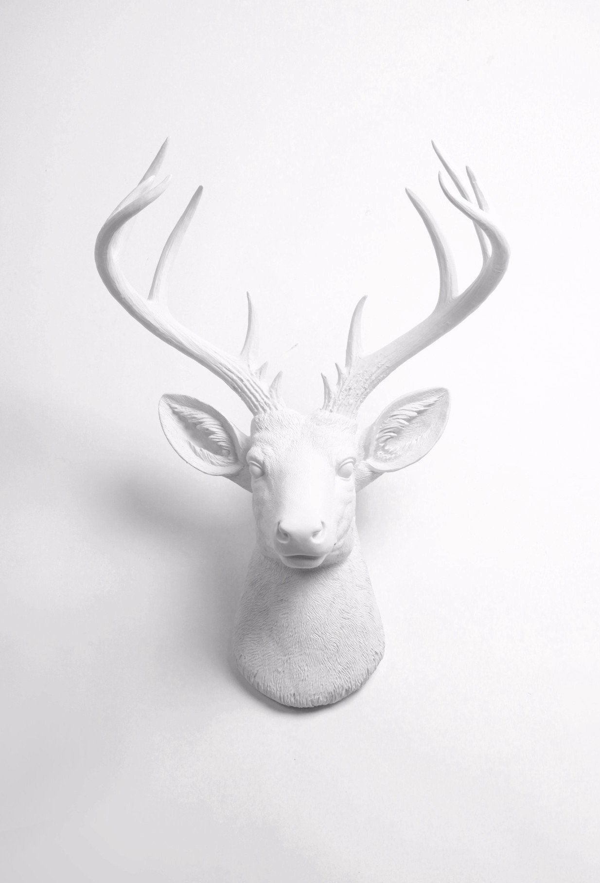 Fake Taxidermy Pertaining To Widely Used Large Deer Head Faux Taxidermy Wall Decor (View 2 of 20)
