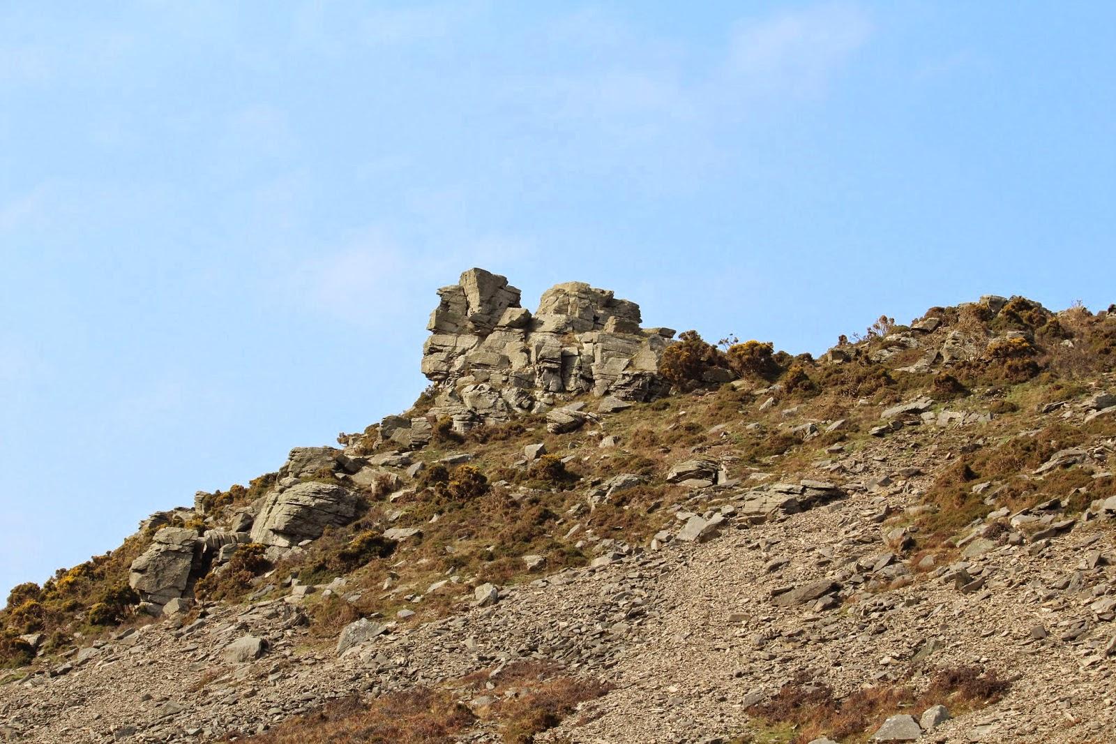 Famous Jan's Ramblings: A West Somerset Break – Part 3 Regarding Wetherden Tree Wall Decor (View 19 of 20)