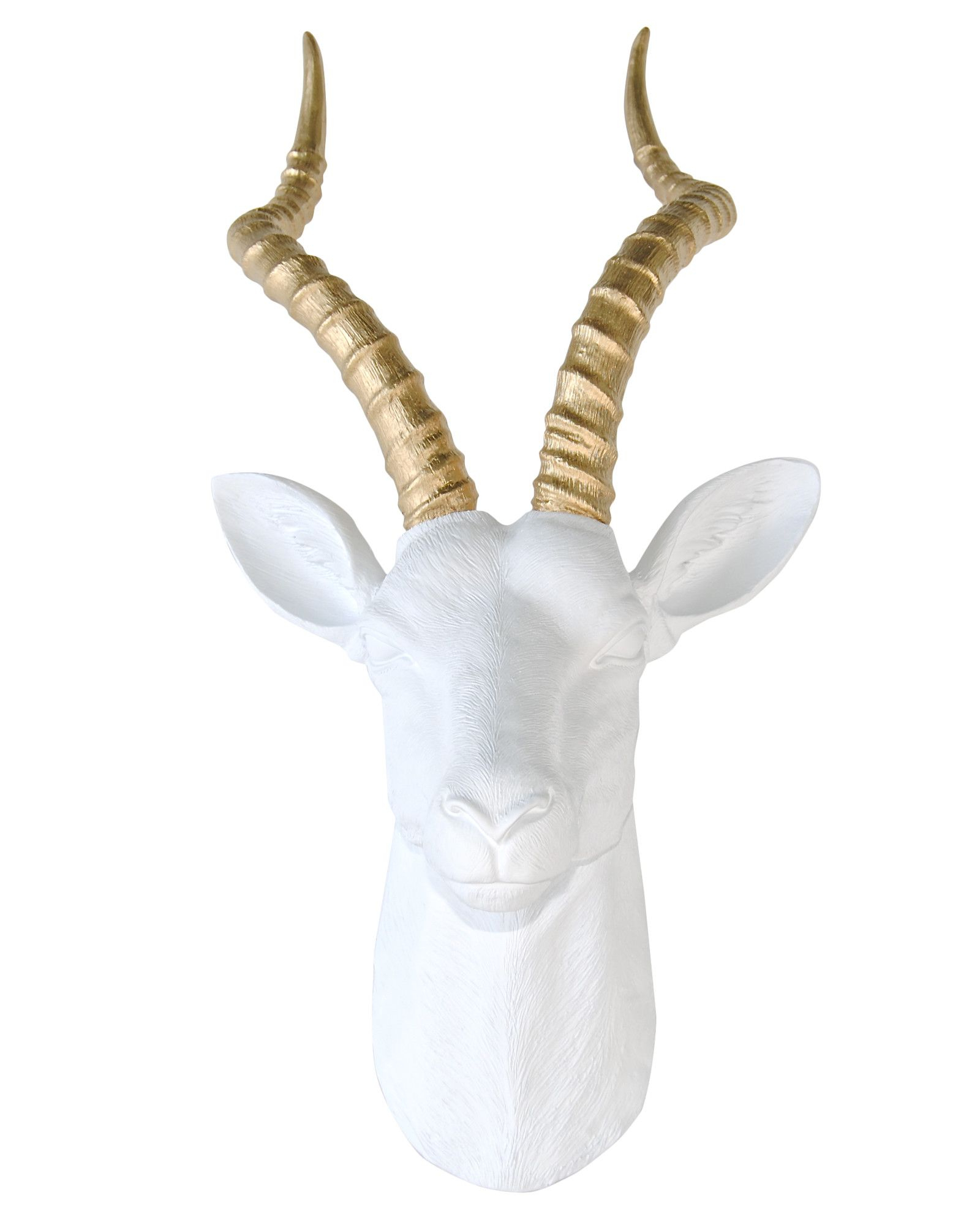 Faux Taxidermy, Decor (View 7 of 20)