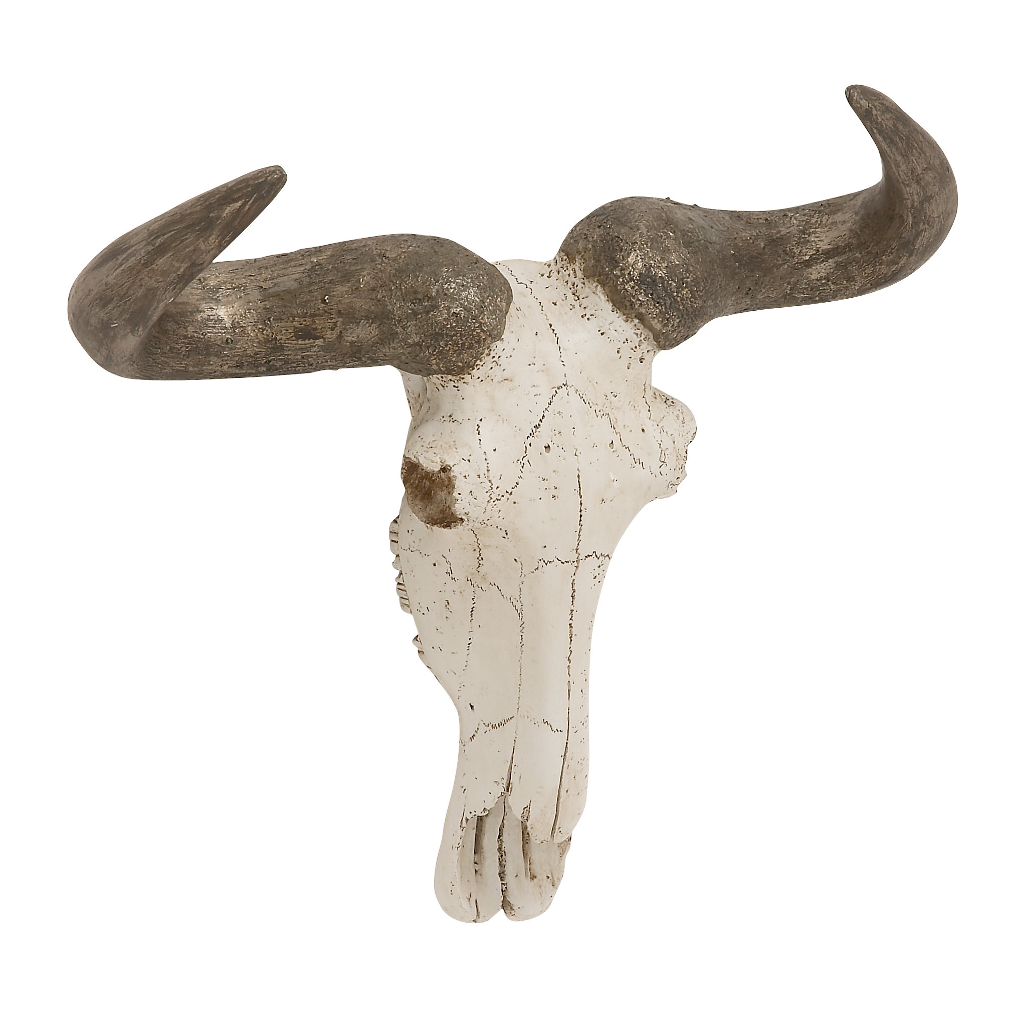 Highlands Ranch The Templeton Wall Decor Inside Widely Used Steer Skull Bust White/brown Wall Décor & Reviews (View 5 of 20)