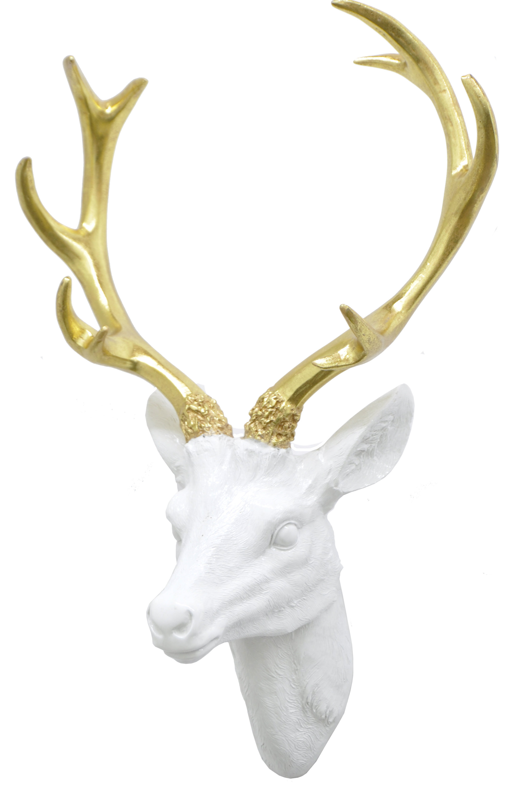 Highlands Ranch The Templeton Wall Decor Pertaining To Famous Three Hands Co. Resin Deer Head Wall Décor & Reviews (Gallery 9 of 20)