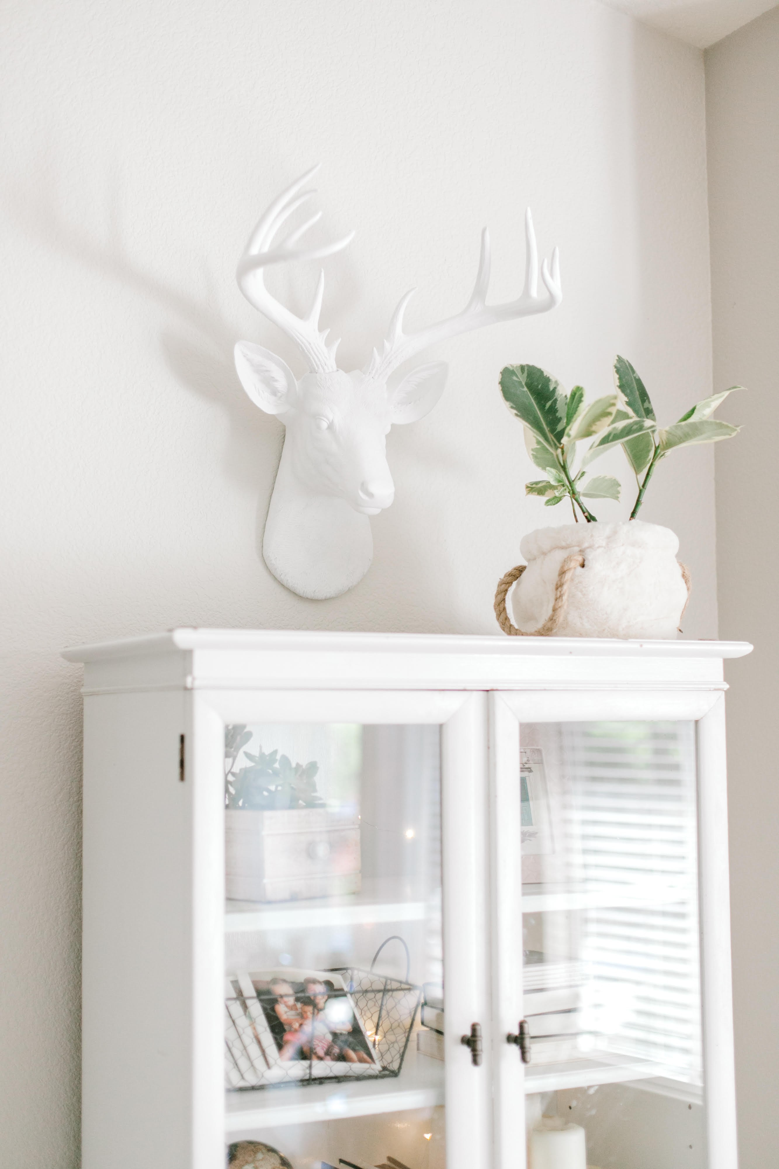 Large 14 Point Deer Head Wall Mount // White Throughout Current Large Deer Head Faux Taxidermy Wall Decor (View 9 of 20)