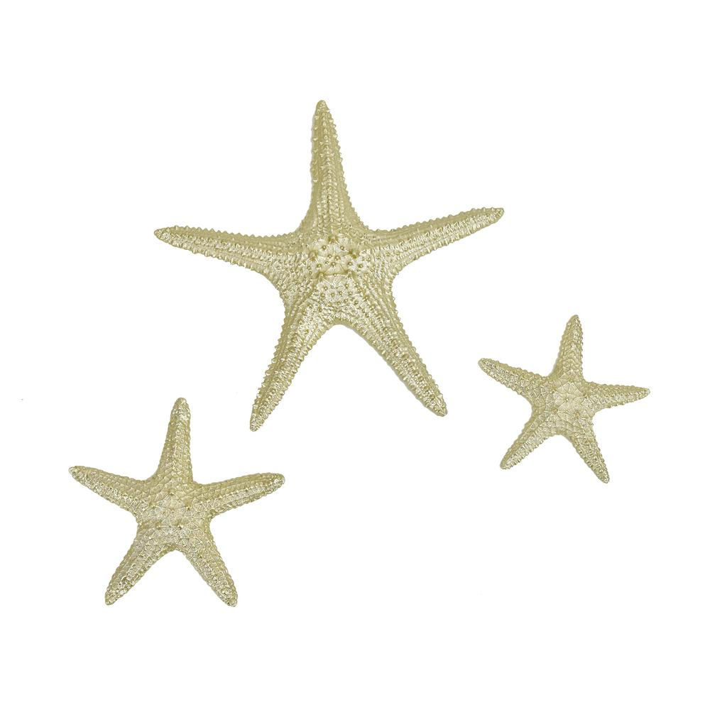 Most Up To Date Fetco Yelton Platinum Starfish Set X67600B – The Home Depot Within Yelton 3 Piece Starfish Wall Decor Sets (View 14 of 20)