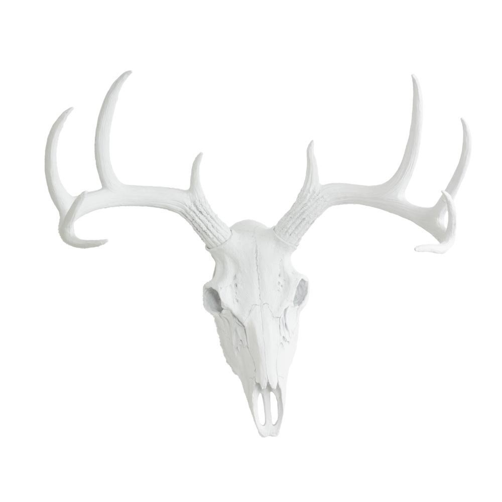 Most Up To Date Large Deer Skull Animal Headwall Charmers (View 15 of 20)