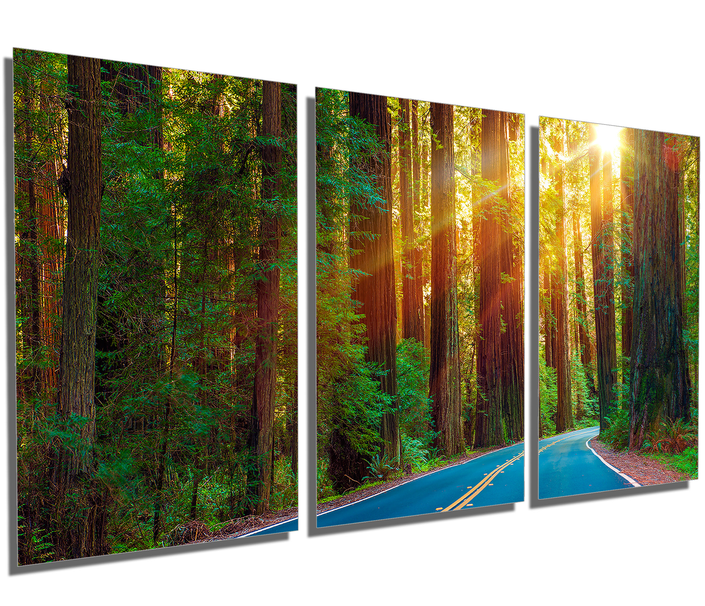 Nature Metal Sun Wall Decor Inside Well Known Metal Print Redwood Forest Highway 3 Panel Split (Gallery 17 of 20)