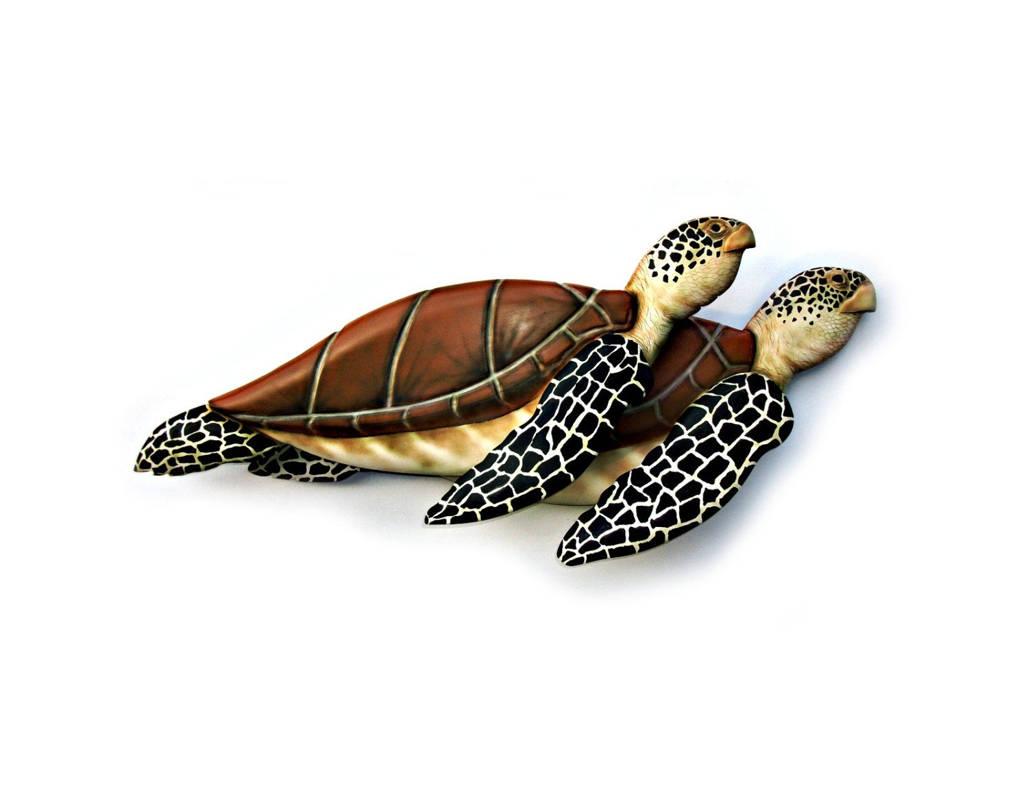 Rhys Turtle Decor Wall Decor Pertaining To Most Current Sea Turtle Wall Art – Pmpresssecretariat (View 10 of 20)