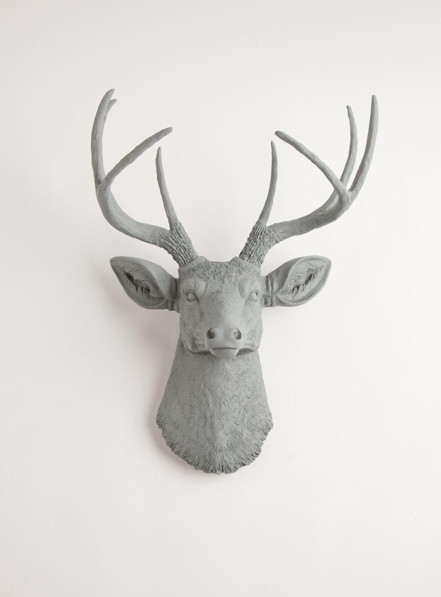 Stag Deer Head (View 16 of 20)
