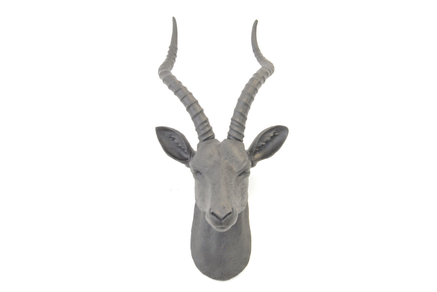 Widely Used Highlands Ranch The Templeton Wall Decor For Large Antelope Head Wall Décor & Reviews (View 20 of 20)