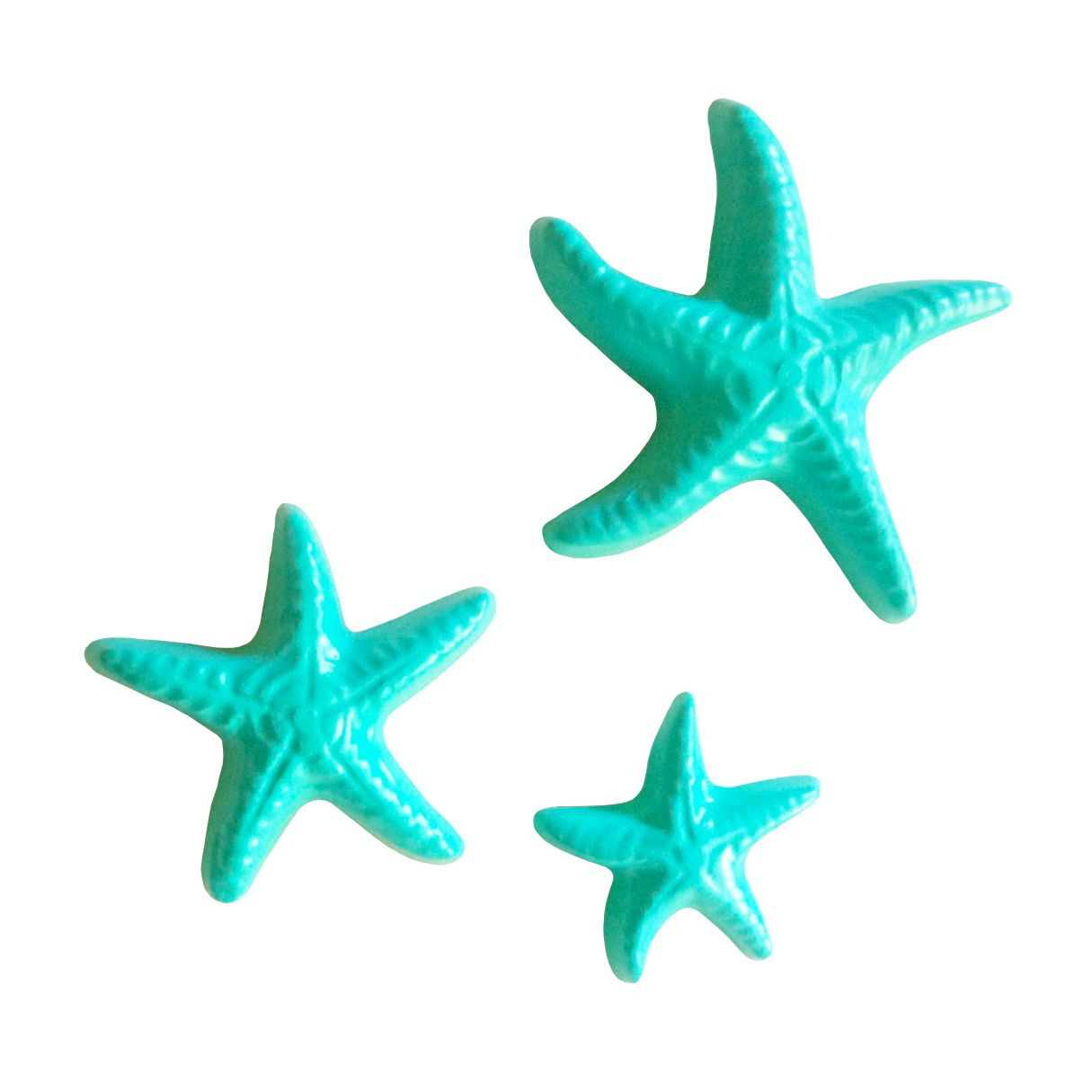 Yelton 3 Piece Starfish Wall Decor Sets Pertaining To Well Known Yelton 3 Piece Starfish Wall Décor Set (View 10 of 20)