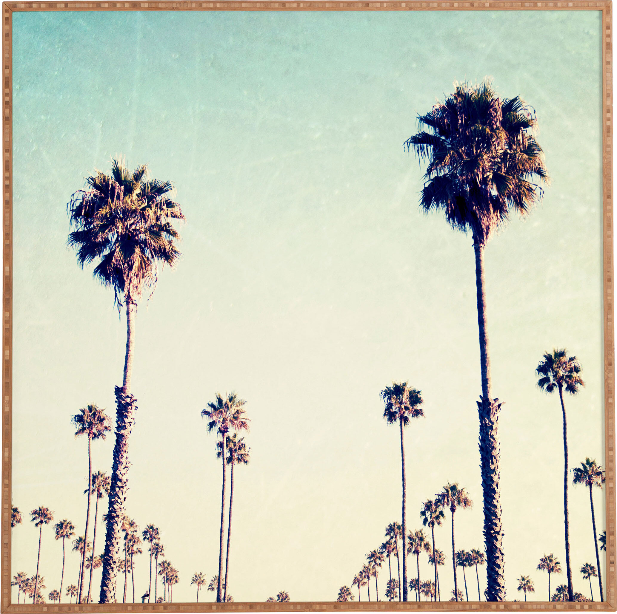 California Palm Trees – Picture Frame Print On Paper Within Latest Blended Fabric Palm Tree Wall Hangings (View 5 of 20)