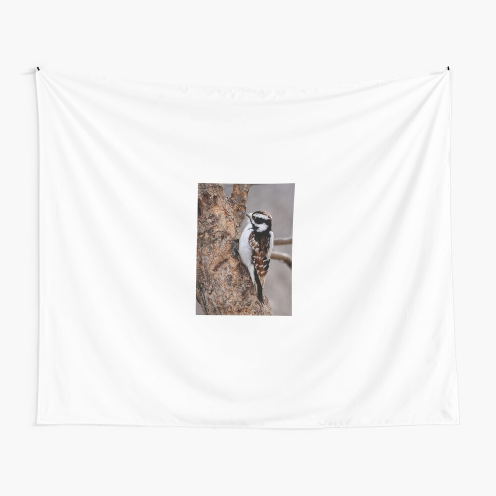 """Cinnamon Coloured Downy Woodpecker"""" Baby One Piecedarby8 Pertaining To Most Current Blended Fabric Woodpecker European Tapestries (View 14 of 20)"""