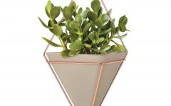 Trigg Ceramic Planter Wall Decor