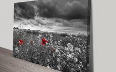 Black and White Photography Canvas Wall Art