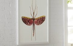Insect Wall Art